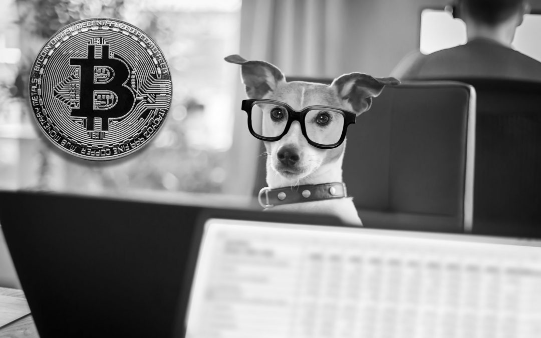 How to Report Bitcoin on Taxes